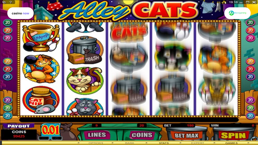 Spielautomat Alley Cats Microgaming Bild