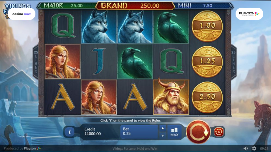 Spielautomat Vikings Fortune: Hold and Win Playson Bild
